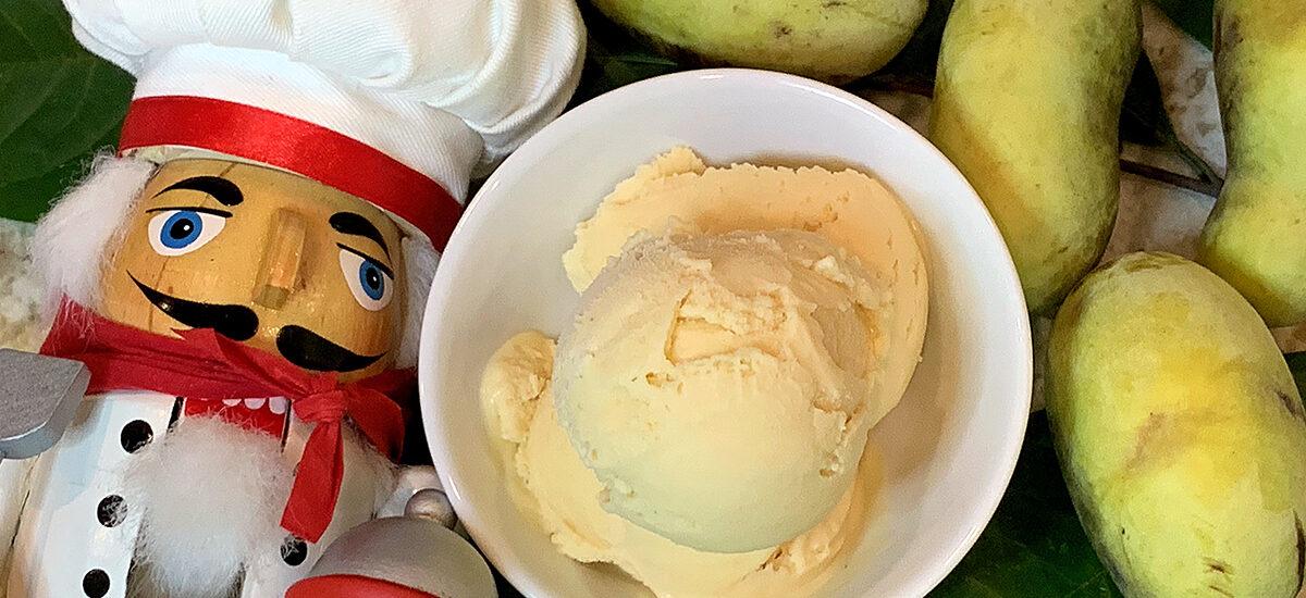 Homemade Pawpaw Ice Cream