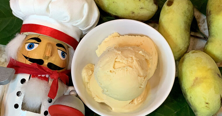 Homemade Pawpaw Ice Cream