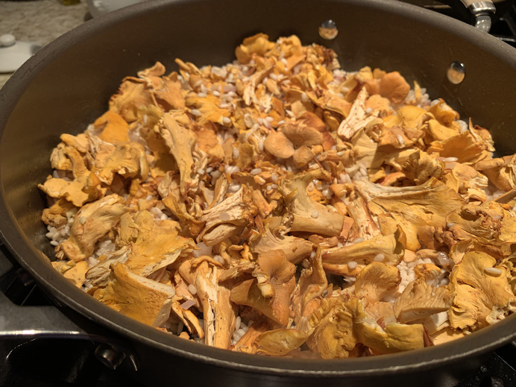 Chopped fresh chanterelles in a nonstick skillet