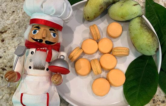 Pawpaw Macarons